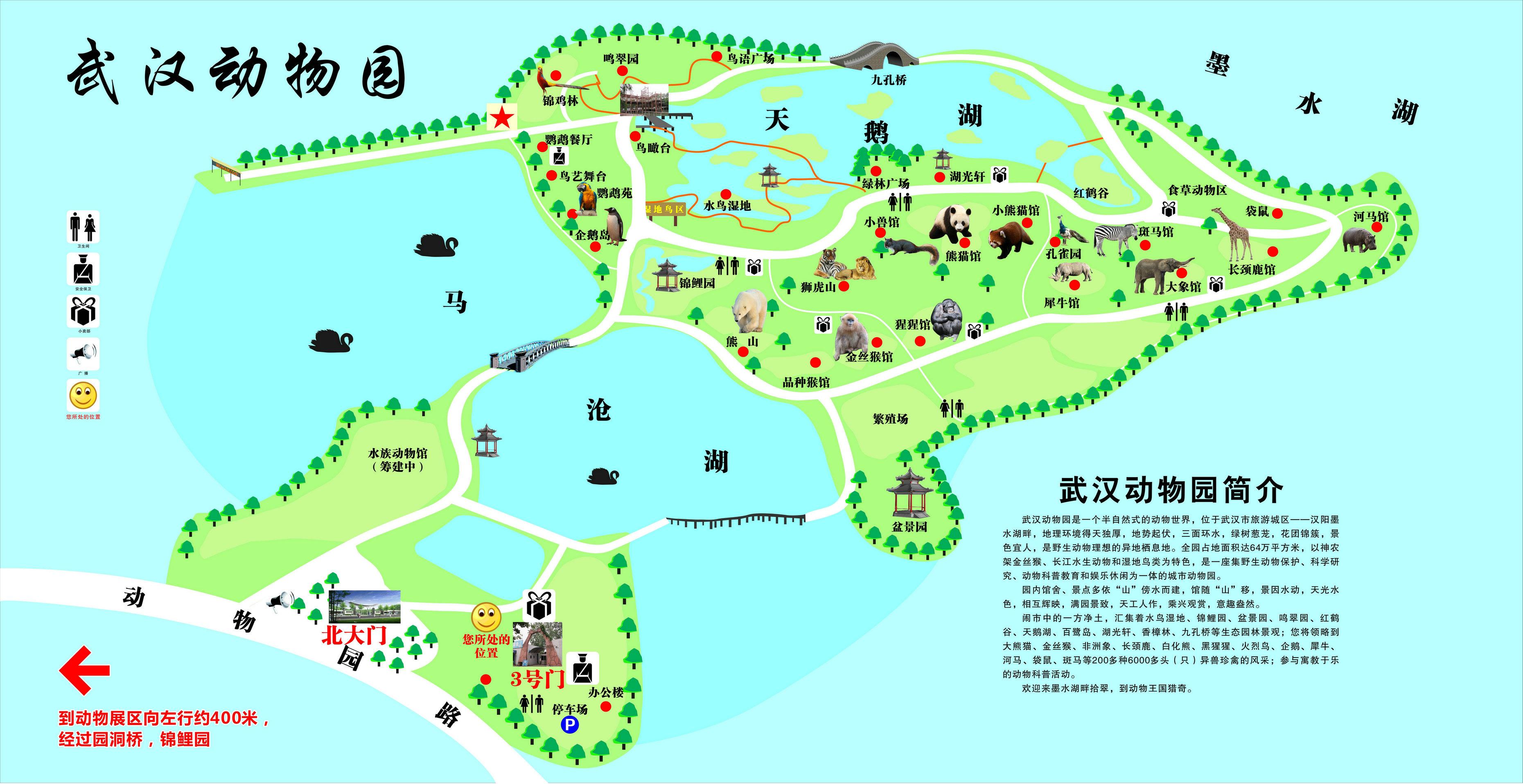 导游图-武汉动物园官网