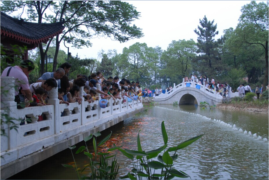 仿自然的小桥,横亘于窄窄的小溪,好一幅江南水乡风景画.